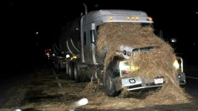 semi-trailer-collides-straw-bale-2