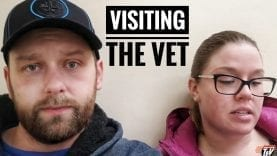 TJV – ANOTHER VET VISIT  – #1579