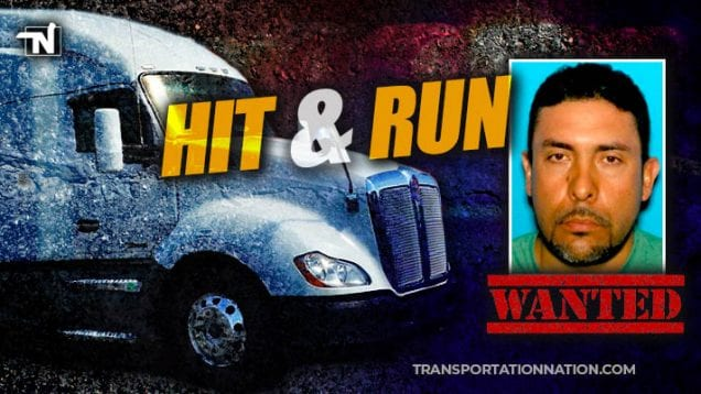 Hit and Run in Grant County