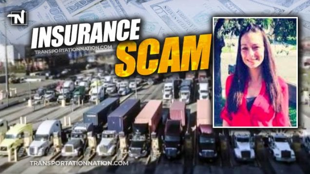 Insurance Scam – Connie Free